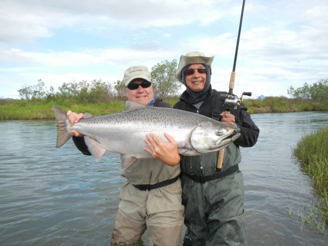 Togiak River King Salmon landed at Mission Lodge in Bristol Bay Alaska