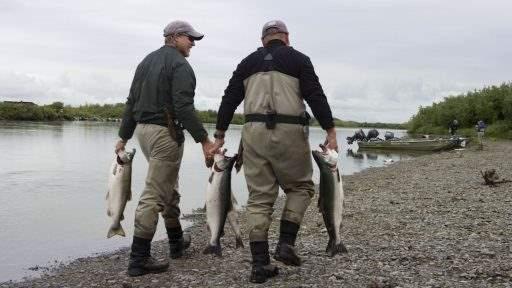 ml_fish_silver_catch