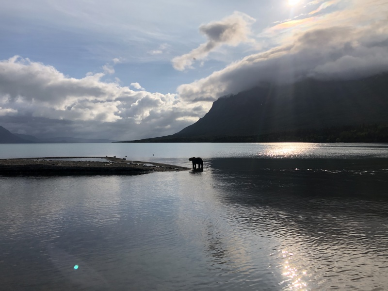 Lake_Bear_Lund
